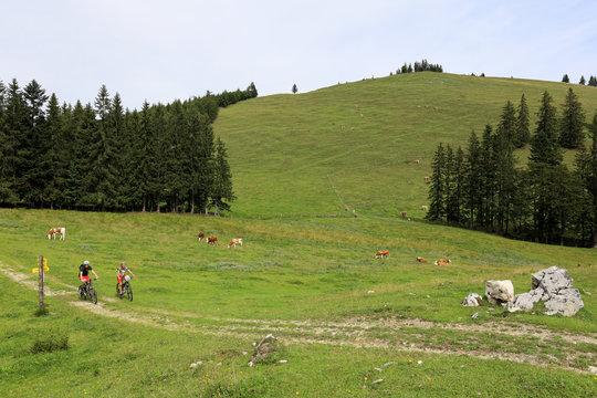 Biken im Chiemgau
