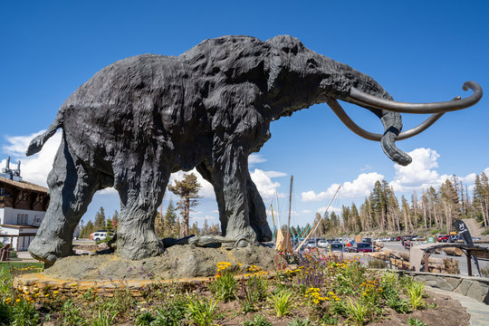 Mammoth Lakes, California - July 12, 2019: The famous mammoth statue at Mammoth Mountain Ski Area near the Main Lodge, taken in summer