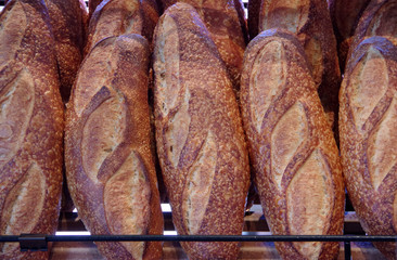Close-up view of freshly baked loaves of sourdough breads on the display shelf