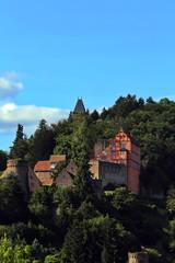 Fototapete - Burg Hirschhorn am Neckar