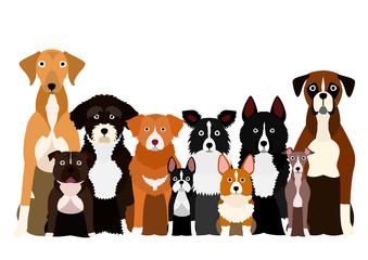 group of white paw dog