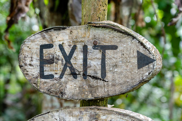Text exit on a wooden board in a rainforest jungle of tropical Bali island, Indonesia. Exit wooden sign inscription in the asian tropics.