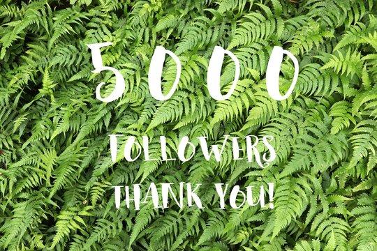 5000 followers banner