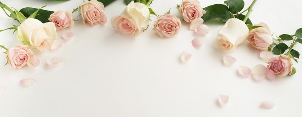 Flowers composition background banner. beautiful pink roses and petals on white     background.Top view.Copy space