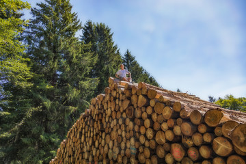 A man is sitting on a huge pile of wood. On one of the lower tree trunks is in German language: Enter prohibited.