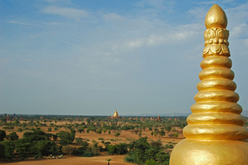 Wall Mural - Myanmar, Bagan, Detail of the golden painted top of a Buddhist temple, a vast arid plain of ancient buddhist temples and bushes in the background
