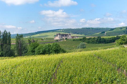 Chateau du Clos de Vougeot, Cistercian Abbey, Clos de Vougeot, Cote d'Or, Burgundy, France, Europe