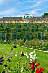 Germany, Brandenburg, Preussen, Potsdam. Flowers bloom next to the terraced gardens in front of main facade of Sans Souci Palace.