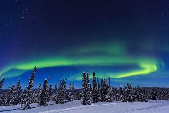 Aurora borealis, Northern Lights near Fairbanks, Alaska