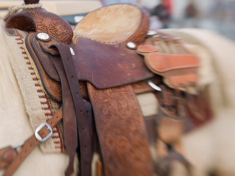Tucson, Arizona: Ropes and equipment of rodeo competitor at the Tucson Rodeo