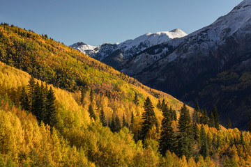 Autumn, aspen trees on mountain slope from Million Dollar Highway near Crystal Lake, Ouray, Colorado