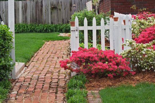 Brick sidewalk, picket fence, and azaleas, Audubon Park neighborhood, Louisville, Kentucky