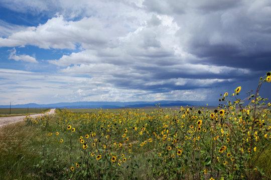 Las Vegas, New Mexico, United States. Scenic