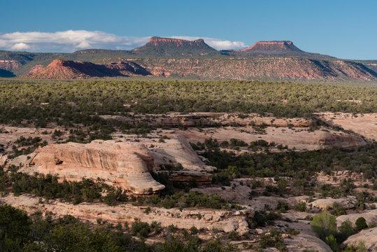USA, Utah. The Bears Ears, Colorado Plateau, Bears Ears National Monument