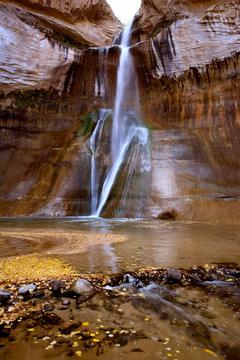 USA, Utah, Escalante NM. Autumn leaves fill the basin at Lower Calf Creek Falls in Escalante National Monument, Utah.