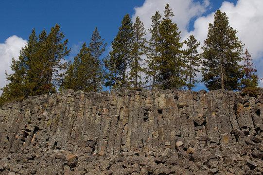 Sheepeater Cliff basalt columns. Yellowstone National Park. Wyoming. USA