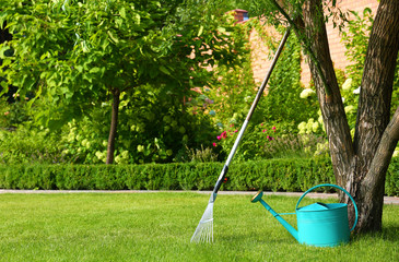 Rake and watering can near tree on green lawn. Gardening tools
