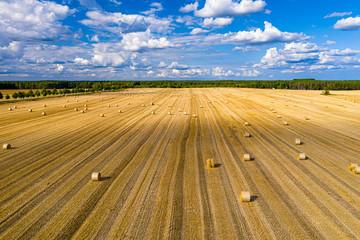 Strohballen auf einem Feld im Landkreis Barnim, Brandenburg