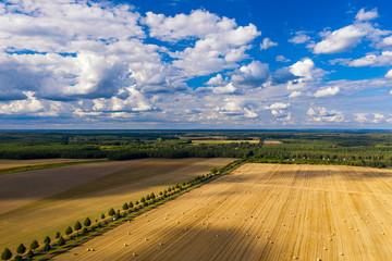 Aussicht auf Felder rund um Biesenthal im Landkreis Barnim, Brandenburg