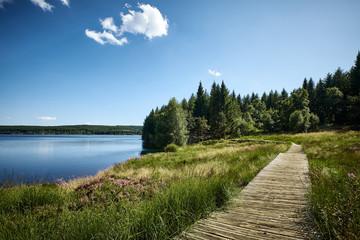 Foto auf Leinwand Himmelblau Lac de Charpal en été