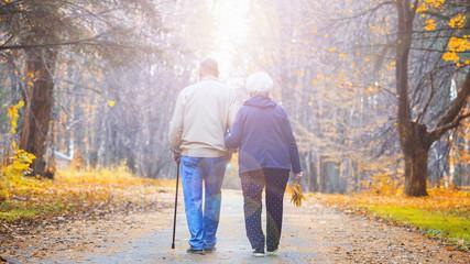 Senior couple walking in an autumn park. Wall mural