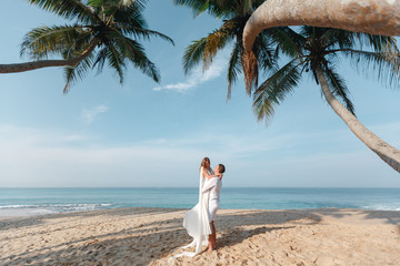 Stylish  bride and groom walking under palms on the background of the ocean and beach, wedding ceremony in Sri Lanka
