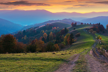mountain countryside at dusk. beautiful autumn scenery. trees along the path through hilly rural area. carpathian borzhava ridge beneath a glowing golden sky with clouds in the distance
