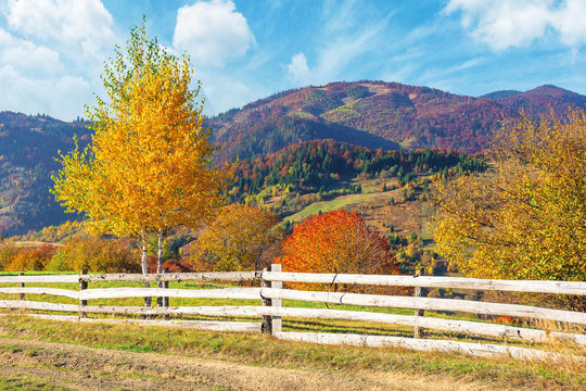 rural area in mountains. beautiful autumn weather on a sunny day. wooden fence along the country road. trees in fall foliage. ridge beneath a sky with clouds in the distance