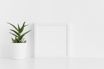 White square frame mockup with a aloe vera in a pot on a white table.