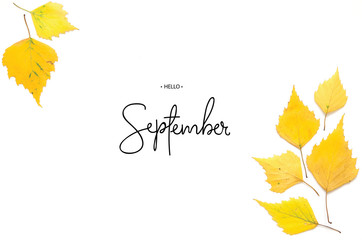 Inscription Hello September. Yellow autumn leaves isolated on white. - Image