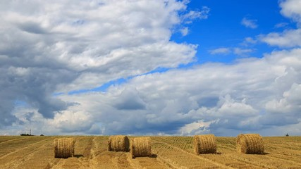 Wall Mural - Scenic agricultural land. Yellow haystacks in the field wheat and blue sky with white clouds. Beautiful dynamic landscape on a Sunny day. Beauty of nature, agriculture, harvest 4K UHD Timelapse.