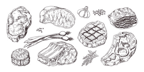 Steak. Vintage sketch with beef and pork chops ribs and fillet, butchery food products with garlic and pepper. Vector illustrations hand drawn fillet meat set with onion, garlic, pepper Wall mural