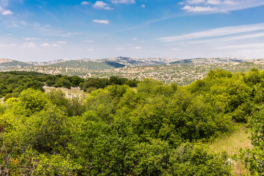 View from the Roe Deer Trail in The Ajloun Forest Reserve in Jordan