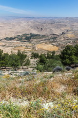 Mount Nebo, Jordan. The view from the summit provides a panorama of the land and, to the north, a more limited one of the valley of the River Jordan.