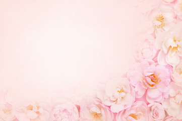 Summer blossoming delicate rose on blooming flowers festive background, pastel and soft bouquet floral card Wall mural