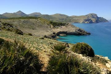 Die Felsenküste zwischen der Cala Estreta und Cala Torta auf der Halbinsel Llevant im Naturpark Llevant, Mallorca, Balearen, Spanien