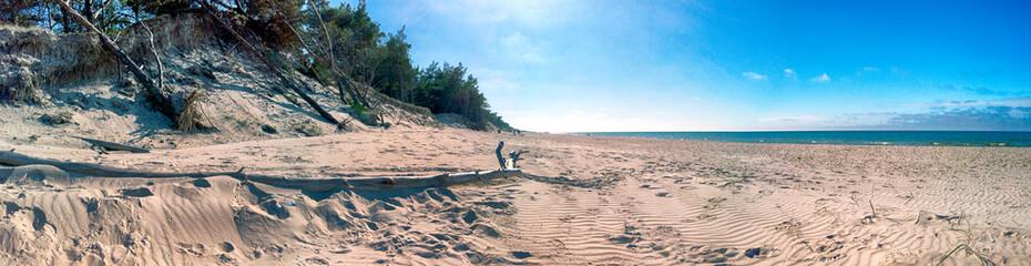 Slowinski National Park on the Baltic Sea coast, near Leba, Poland. Beautiful sandy beach, dune...