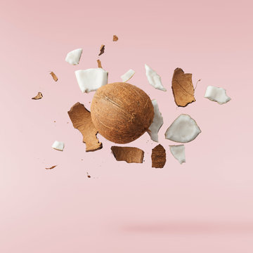 Fresh ripe coconut isolated on pink background