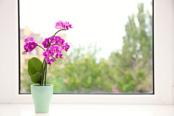 Tuinposter Orchidee Flowerpot with blooming orchid on windowsill indoors, space for text