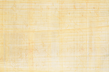 Authentic Egypt papyrus paper background and texture number 37. Closeup macro.