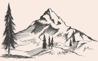 Hand drawn sketch of pine forest and mountains. Vector background.