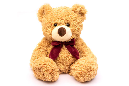 Brown teddy bear isolated on white background.