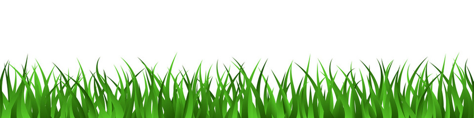 Green grass lawn seamless border summer background