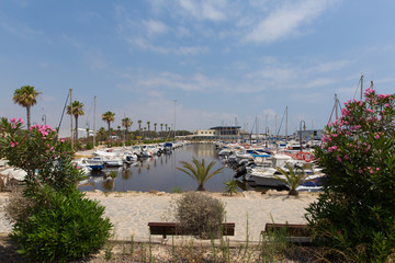 Guardamar del Segura Marina de las Dunas with boats and yachts and pink flowers Costa Blanca Spain