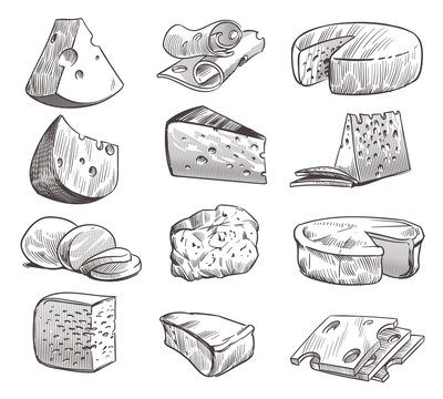 Sketch cheese. Various types of cheeses. Fresh cheddar, feta and parmesan dairy snack. Hand drawn retro vector isolated set