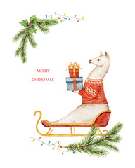 Watercolor vector Christmas card Llama or alpaca and fir branches.