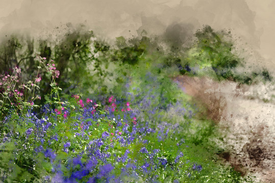 Digital watercolor painting of  landscape of vibrant bluebell woods in Spring