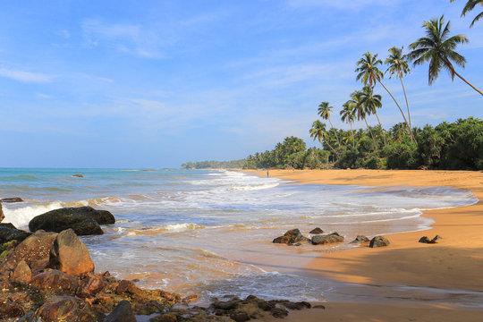 Wild tropical beach and ocean in Sri Lanka