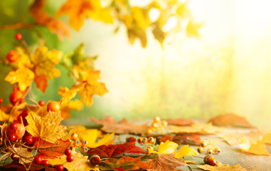 Aluminium Prints Autumn Thanksgiving or autumn scene with leaves and berries on wooden table. Autumn background with falling leaves.