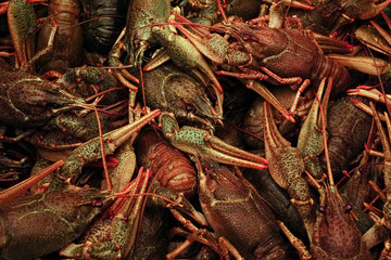 A lot of red boiled crayfish lies. The picture is vertical.